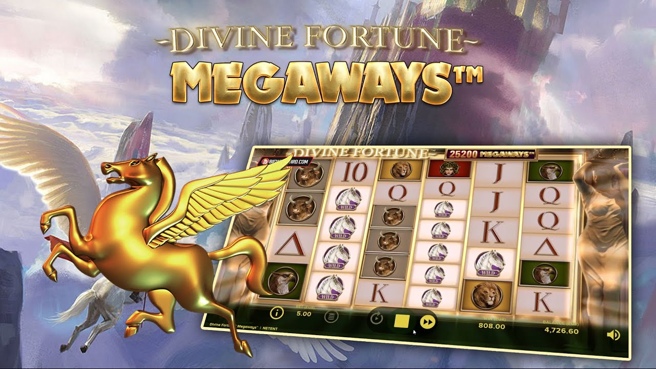 Casino med 196793